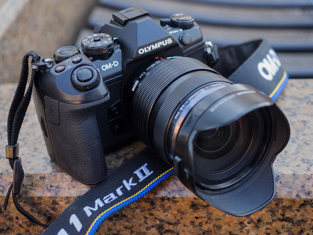 Результат вычисления пробега Sony A7 Mark II — 313 кадров.