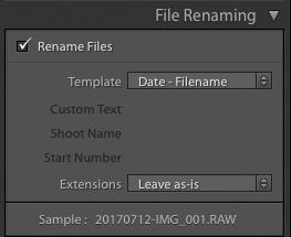 screenshot showing how to import photos into Lightroom - file renaming