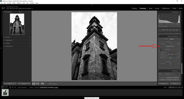 Lightroom lens correction tab for manual lens distortion correction