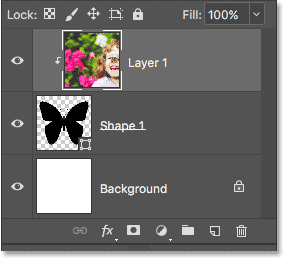 The Layers panel showing the image clipped to the Shape layer.
